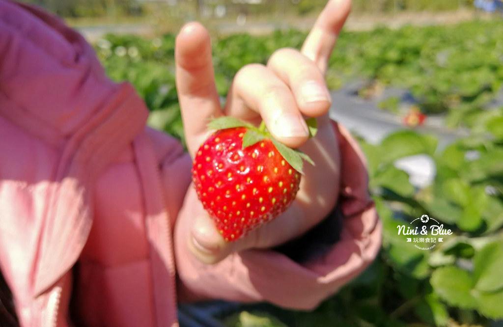 小農夫草莓園01