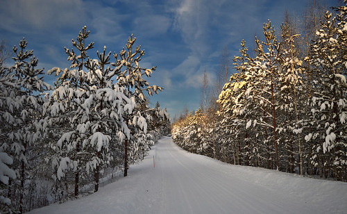 Our beautiful winter... Finland 2019.