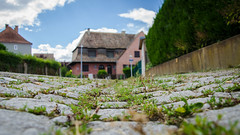 Cité-jardin du Stockfeld #4 / Sous les pavés, l'herbe - Photo of Plobsheim