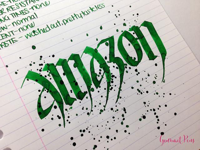 Caran d'Ache Amazon Ink 10