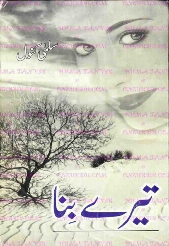 Tere Bina is a very well written complex script novel by Salma Kanwal which depicts normal emotions and behaviour of human like love hate greed power and fear , Salma Kanwal is a very famous and popular specialy among female readers
