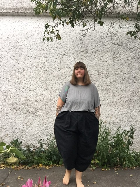 Style Arc Ethel Pants in Linen