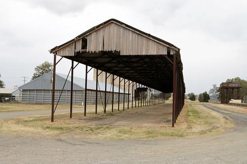 Canowindra Rail Yards (2/2)