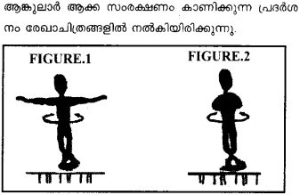 Plus One Physics Previous Year Question Papers and Answers 2017 2