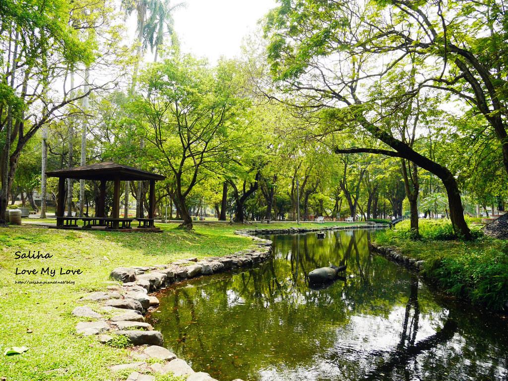 嘉義市區一日遊景點行程推薦嘉義公園植物園射日塔 (1)