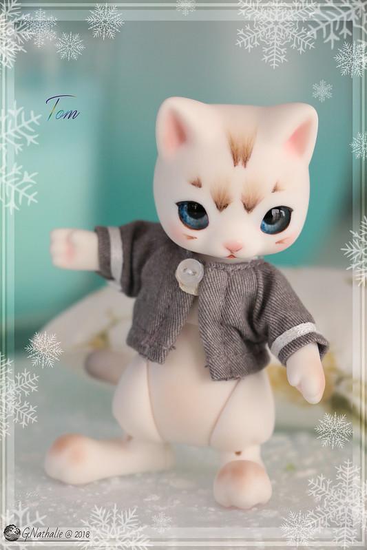 ✰ Ma famille de kitsune (p. 20) - Page 19 44756463910_f64bc2bdae_c