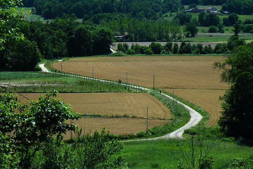 20090528 221 1107 Jakobus Weg Felder Wald Wiese Pilger