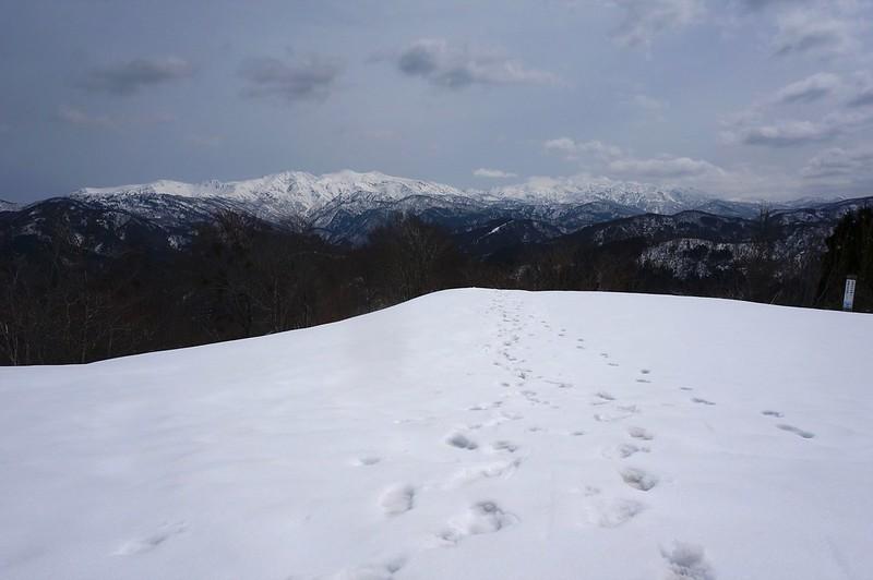 西山からの白山連峰