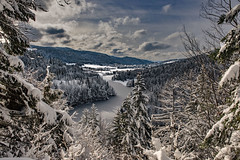 Le Doubs presque gelé.  The Doubs River getting frozen .  Frontière franco-suisse aux Brenets . Canton of Neuchâtel, Switzerland.   .29.01.19, 14:56:34 . No. 175.
