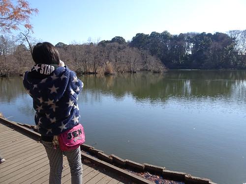 石神井公園の野鳥