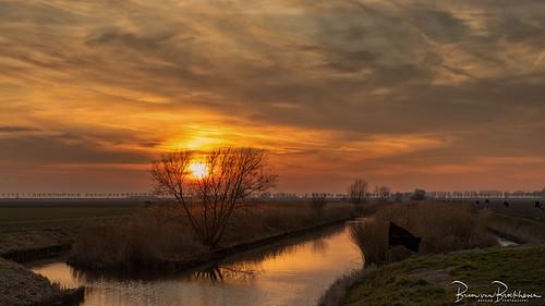 Sunset polder Dirksland