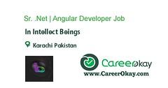 Sr. .Net | Angular Developer