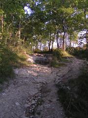 20080917 38507 1018 Jakobus Wald Weg Stein - Photo of Sainte-Alauzie