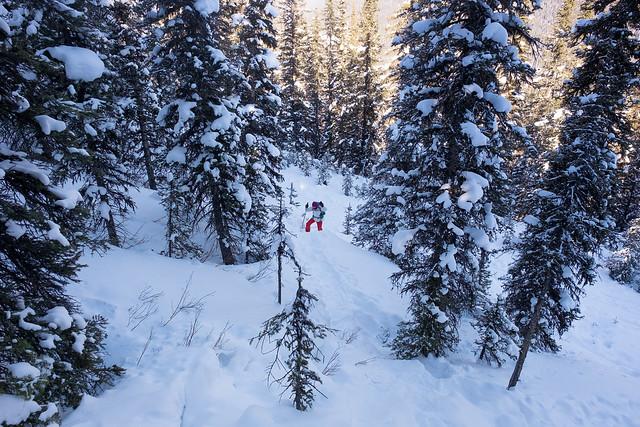 Snowshoeing - Gypsum Ridge - Feb 2019-4