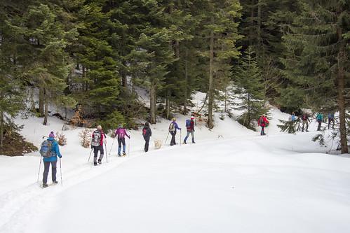 Bosnië-Herzegovina, Sneeuwschoen standplaatstocht