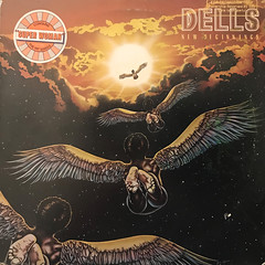 DELLS:NEW BEGINNINGS(JACKET A)