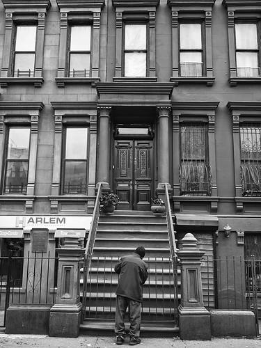 New York City (5)