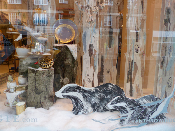 vitrine anthropologie