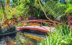 Sunken Gardens - St. Petersburg, FL