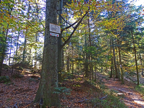 Le col du Himbeerfels