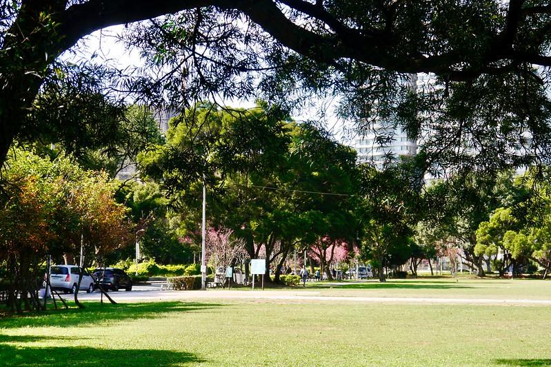 林口运动公园