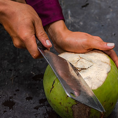 Coconut, Can Tho, Mekong delta
