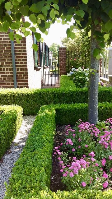 Voortuin buxus landelijke tuin