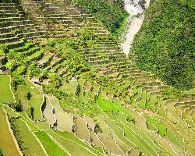Terrazas verdes de Batad