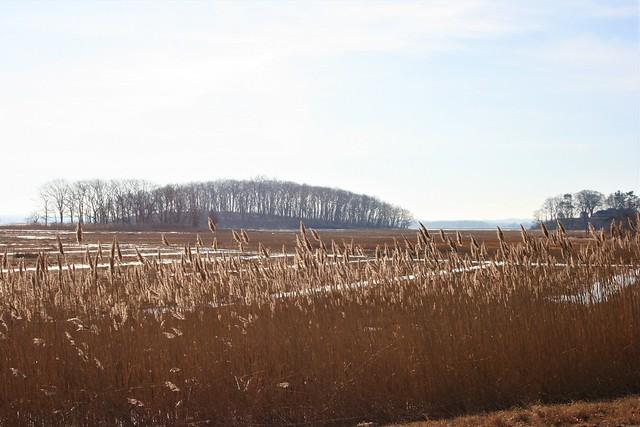 Outside in February