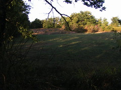 20080917 38493 1018 Jakobus Wiese Wald - Photo of Sainte-Alauzie
