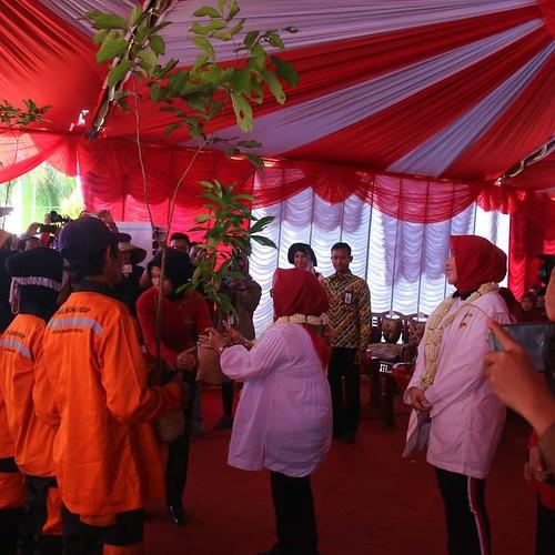 Srikandi BKSDA Kalsel Dukung Perempuan Peduli Mangrove (01)
