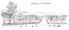 Snell sketch of Willunga, 1850