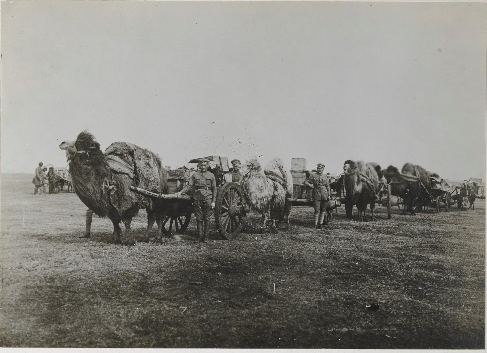 «Транспорт русской армии»