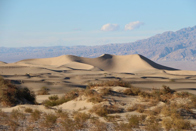 Mesquite Flat Sand Dunes from Highway 190 near Stovepipe Wells