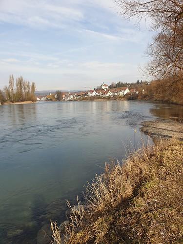 Der Hochrhein bei Kadelburg