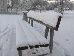 31. Januar 2019 - 10:02 - Winterspaziergang in Roxel am 31. Januar 2019.