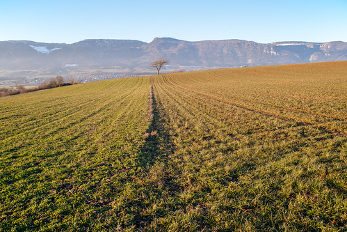 Open View of the Jura