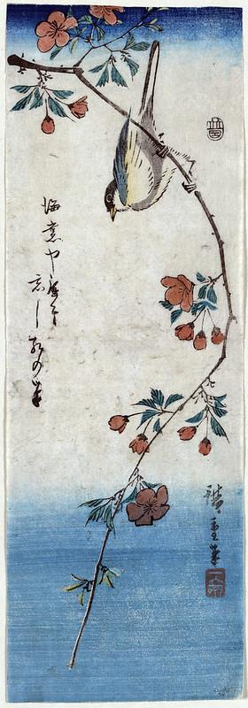 Small Bird on a Branch of Kaidozakura