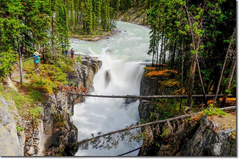 Sunwapta Falls  (1)