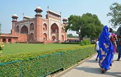 India 82