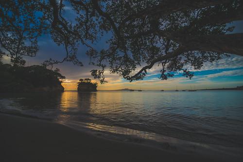 Waiake Bay