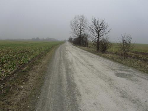 20110316 0203 327 Jakobus Weg Nebel Felder Bäume