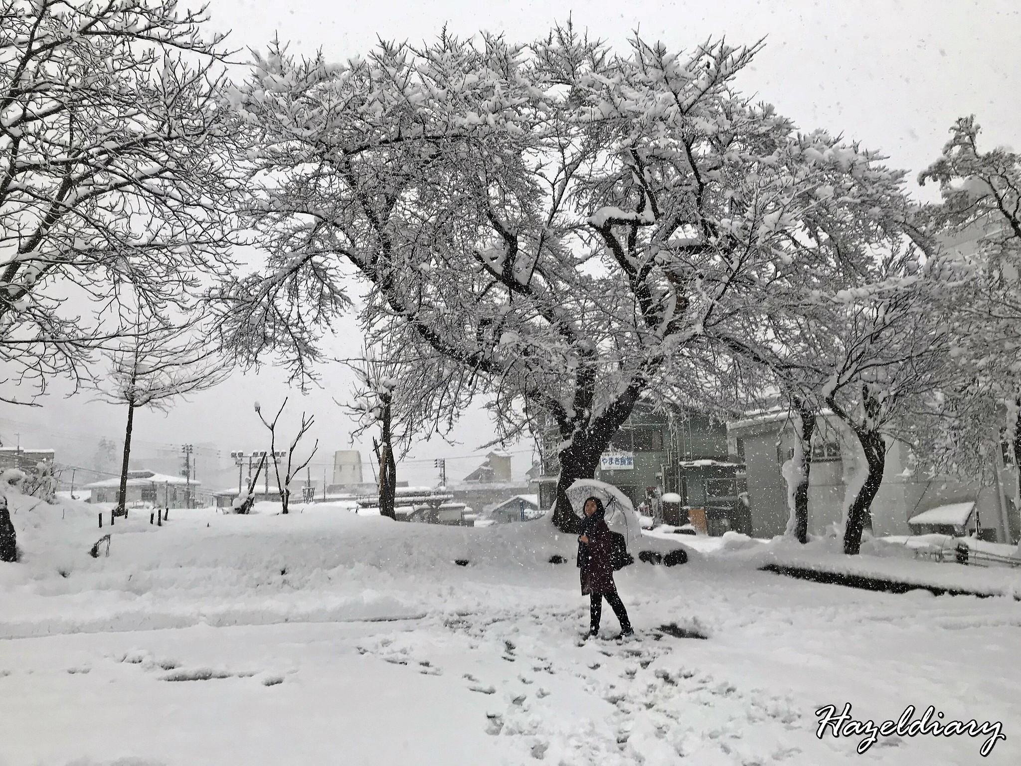 [JAPAN TRAVELS] A Day To Echigo Yuzawa | Niigata Prefecture from Tokyo