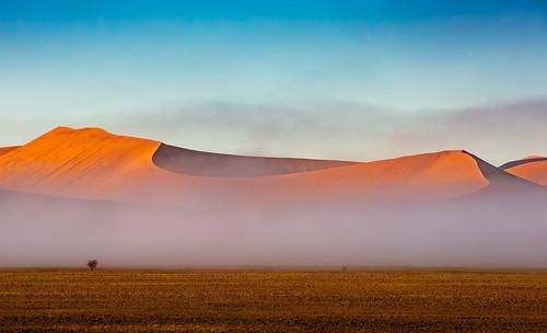 africa morning dunes sand sunrise desert curves namibia mist fog hills landscape namibsandsea namibnaukluftpark hardapregion na