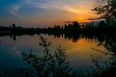 Lac de Lavernose - Photo of Beaumont-sur-Lèze