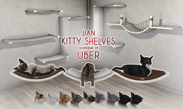 JIAN Kitty Shelves (Uber Jan '19)