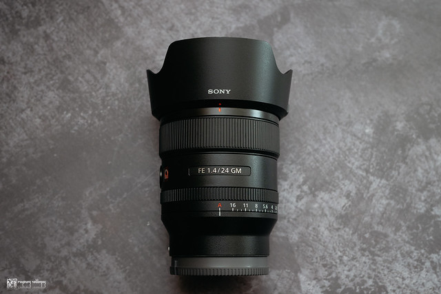 融化在情人的眼光裡:Sony FE 24mm F1.4 G Master | 03