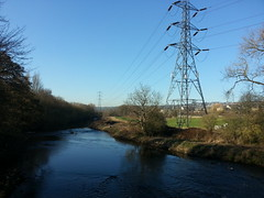 River Aire looking north