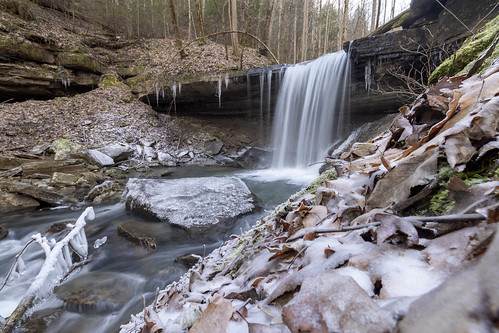 Middle Polly Branch Falls, Bridgestone Firestone Centennial Wilderness WMA, White County, Tennessee 2