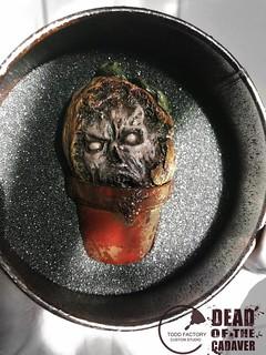 超逼真的腐爛頭顱! 陶德工廠工作室 殘酷蒐藏系列六【腥頭殼】BLOODY HEAD